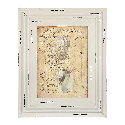 White Vintage Coastal Shells Framed Art Print