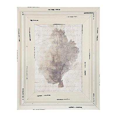 Vintage Coastal Coral Framed Art Print