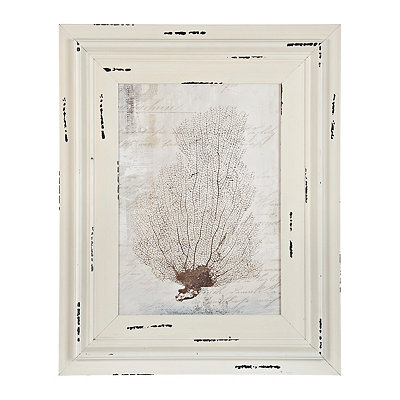 Vintage White Coral Framed Art Print