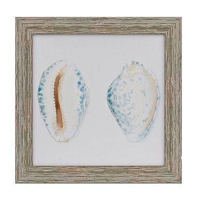 Shell Collection IV Framed Art Print