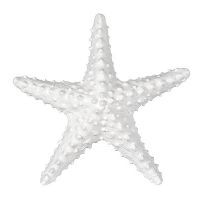 White Starfish Figurine