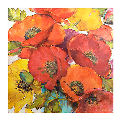 Colorful Poppies Canvas Art Print
