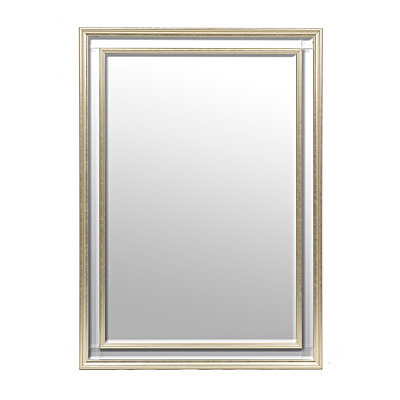 Amelia Champagne Mirrored Framed Mirror, 30x42 in.
