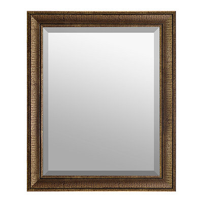Faux Crocodile Skin Framed Mirror, 27.5x33.5 in.