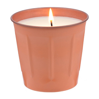 Peach and Thai Basil Tin Candle