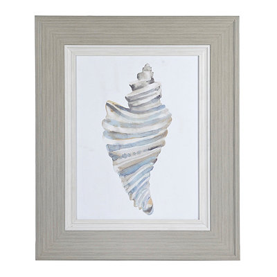 Watercolor Drill Shell Framed Art Print