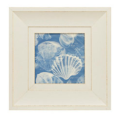 X-Ray Shells I Framed Art Print
