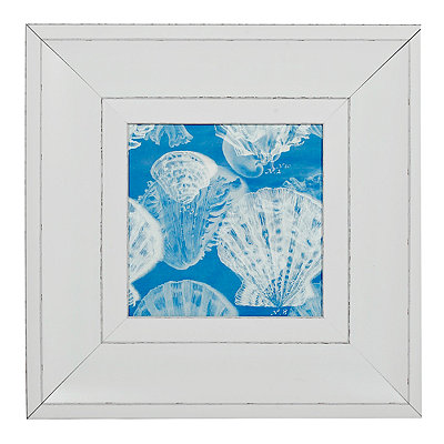 X-Ray Shells II Framed Art Print