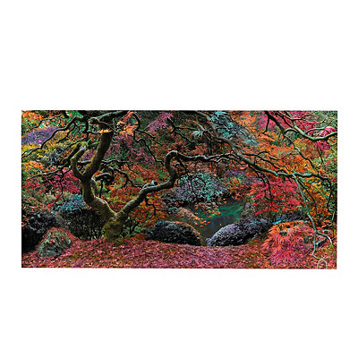Colorful Forest Canvas Art Print