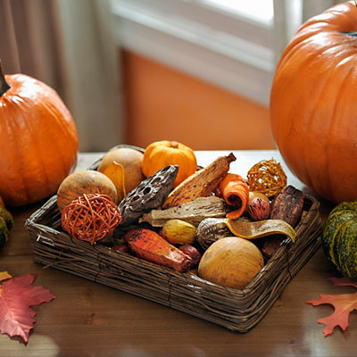 Pumpkin Spice Filler and Vine Tray Set
