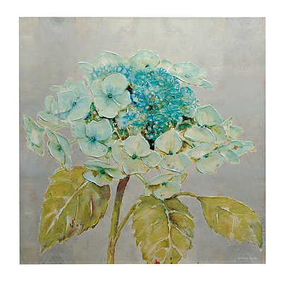 Mancuso Hydrangea Canvas Art