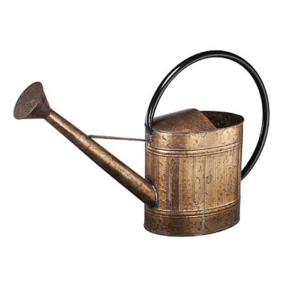 Decorative Copper Watering Can