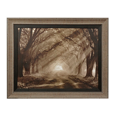 Sepia Evergreen Plantation Framed Art Print