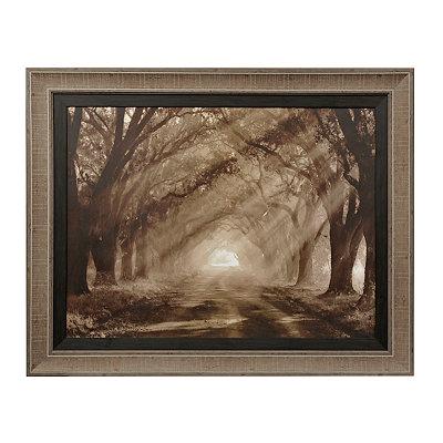 Sepia Evergreen Plantation Framed Art Print