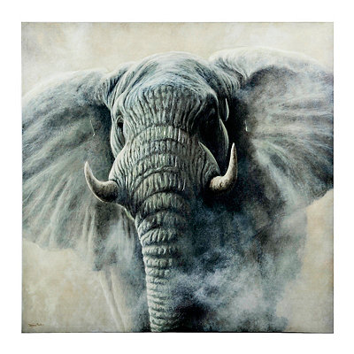 Elephant in the Fog Canvas Art Print