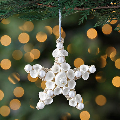 Seashell Starfish Ornament