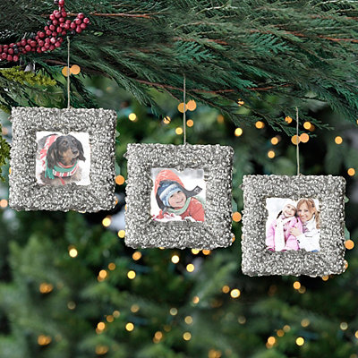 Silver Sequin Photo Frame Ornaments, Set of 3