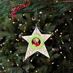 Picture Frame Star Ornament