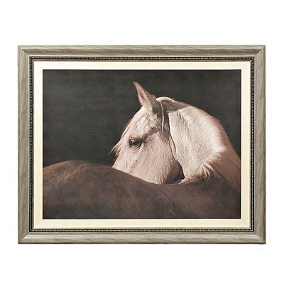 Old Brown Eyes Framed Art Print