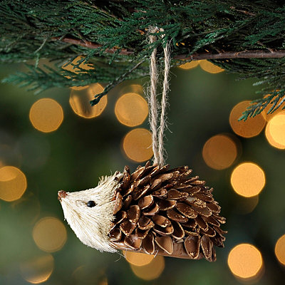 Forest Hedgehog Ornament