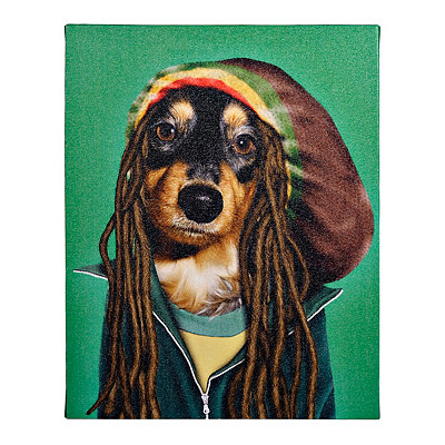 Pets Rock Reggae Canvas Gallery Wrap
