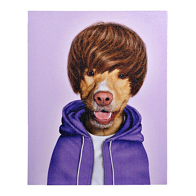 Pets Rock Teen Canvas Gallery Wrap