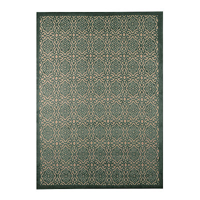 Aqua Dominion Area Rug, 5x7