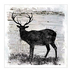 Birchbark Deer Canvas Art Print
