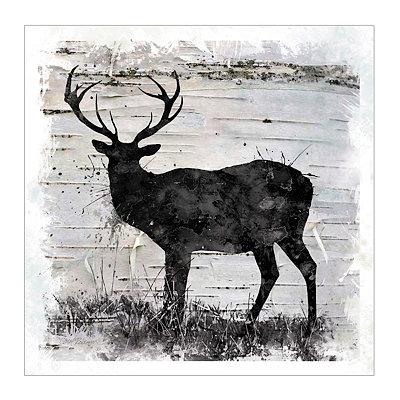 Birchbark Deer Canvas Art Print