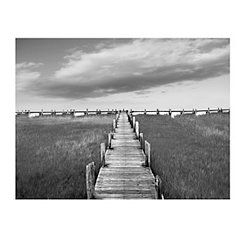 Salt Marsh Canvas Art Print