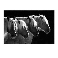 Four Blondes Canvas Art Print