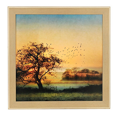 Goodbye Day Birds Framed Art Print