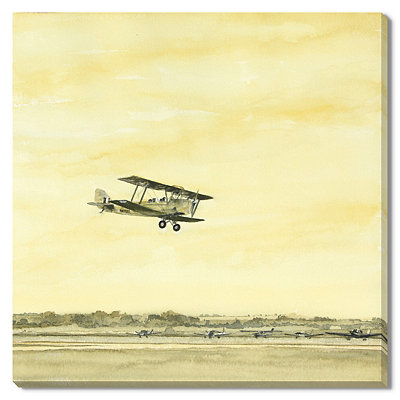 Yellow Tiger Moth Canvas Gallery Wrap