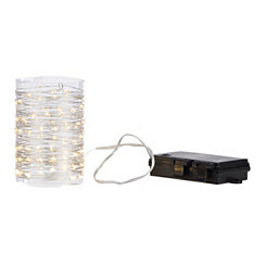 Clear Mini String Light Garland, 32 ft.