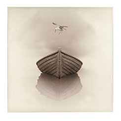 Bird Over A Boat Canvas Art Print