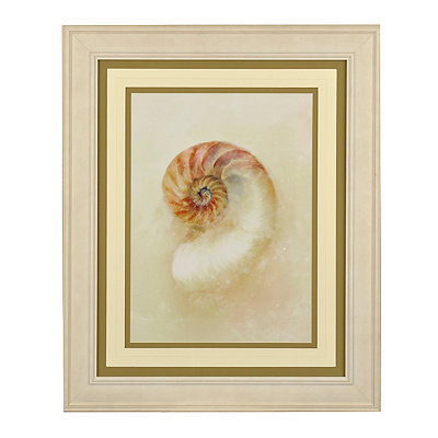 Soft Shells I Framed Art Print