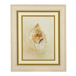 Soft Shells II Framed Art Print