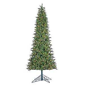 10 ft. Pre-Lit Salem Spruce Christmas Tree