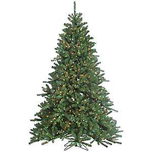 7.5 ft. Multi-Lit Canyon Spruce Christmas Tree