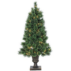 Pre-Lit Cashmere Pine Potted Tree