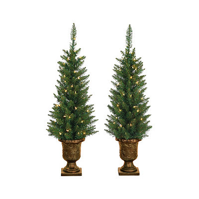 Pre-Lit Norway Pine Potted Trees, Set of 2