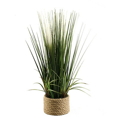Mixed Grass Rope-Wrapped Planter Arrangement
