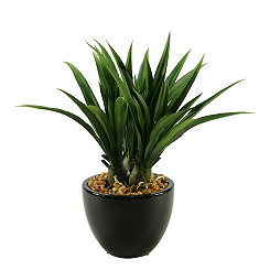Lily Grass Arrangement in Black Ceramic Planter