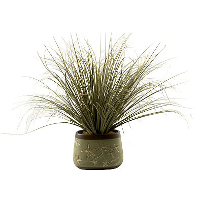 Green Onion Grass Arrangement in Green Planter