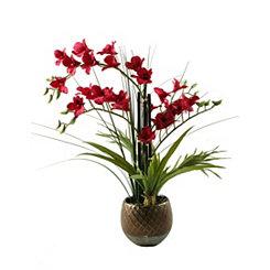 Red Orchids in Metallic Planter Arrangement