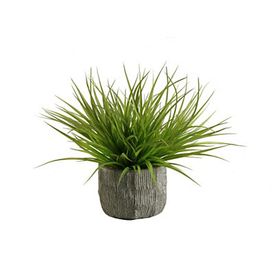 Wild Grass Arrangement in Concrete Planter