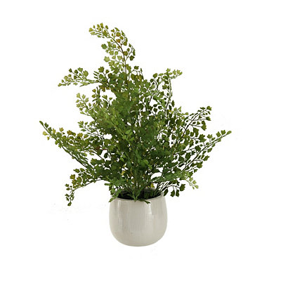Wire Fern Arrangement in White Ceramic Planter