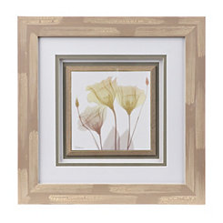 X-Ray Tulips I Framed Art Print