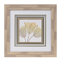 X-Ray Tulips II Framed Art Print