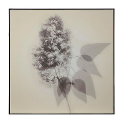 X-Ray Floral Framed Art Print